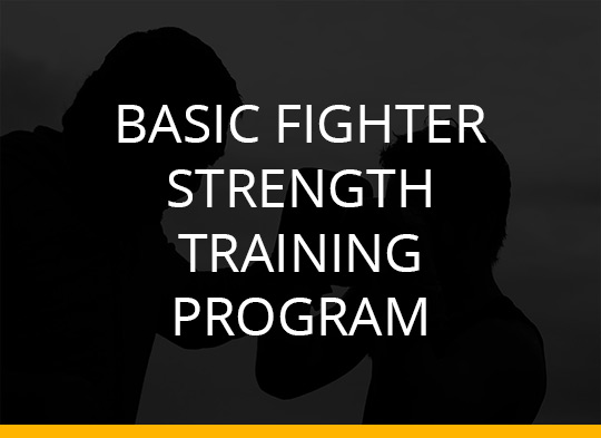Basic Fighter Strength Training Program