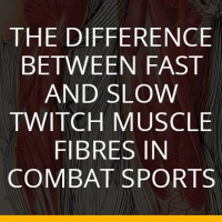 The Difference Between Fast and Slow Twitch Muscle Fibres in Combat Sports