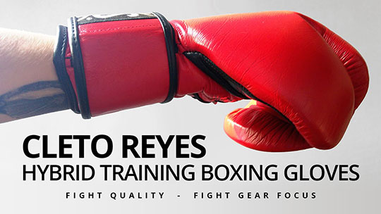 Cleto Reyes Hybrid Training Boxing Gloves Fight Gear Focus