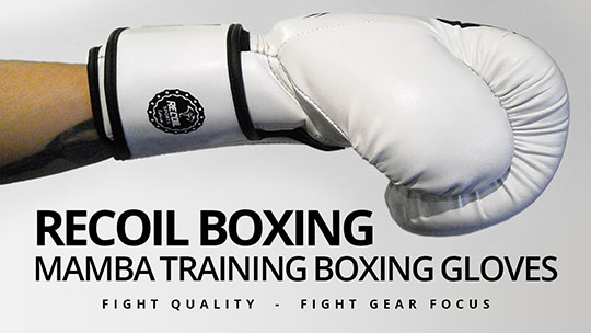 Fight Gear Focus - Recoil Boxing Mamba Training Boxing Gloves (Video)