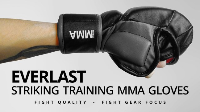 Fight Gear Focus - Everlast Striking Training MMA Gloves (Video)