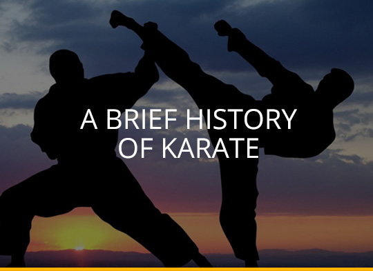 A Brief History of Karate