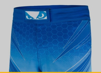 Bad Boy Legacy Evolve MMA Shorts Review