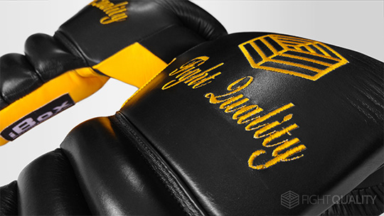 iBox Embroidered Customised Boxing Gloves