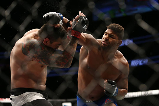 The Best Kickboxers in the UFC – Fight Quality