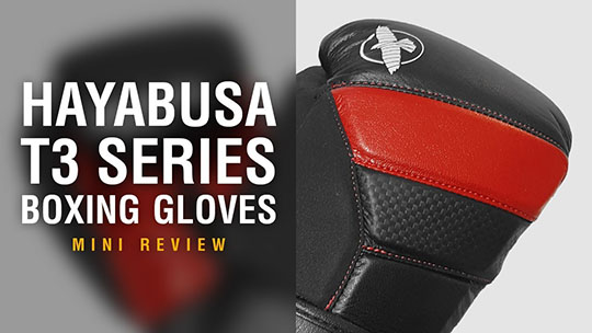Hayabusa T3 Boxing Gloves - Fight Gear Focus Mini Review (Video)