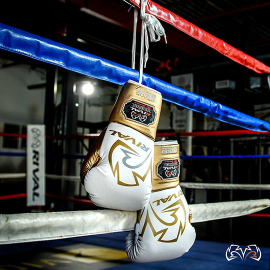 Rival RS100-Professional Sparring Glove