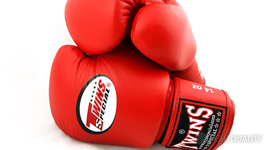 Shiv Naresh Teens Boxing Gloves 12oz: Twins Special BGVL-3 Muay Thai Boxing Gloves Review