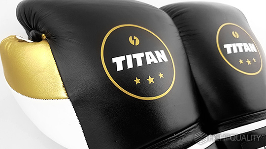 Titan Velocity Boxing Gloves