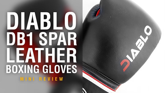 Fight Gear Focus - Diablo DB1 Spar Boxing Gloves (Video)
