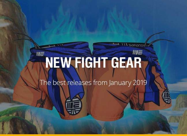 New Fight Gear - January 2019