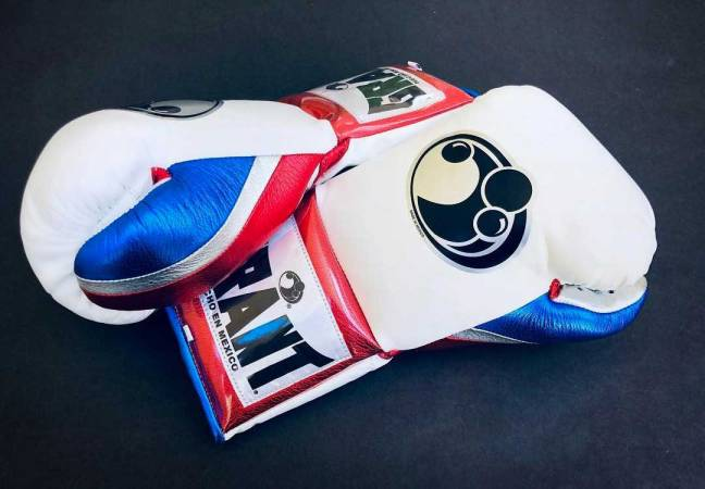 Custom boxing gloves: Grant
