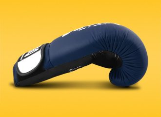 Fight Quality Boxing Glove Reviews