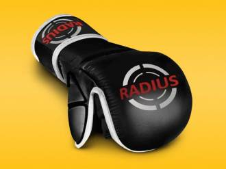Radius R1 MMA Sparring Glove Review