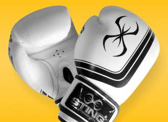 Sting Orion Competition Premium Boxing Gloves (16oz) Review