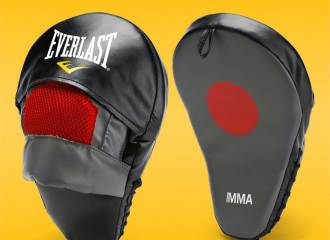 Everlast MMA Mantis Boxing Mitts Review