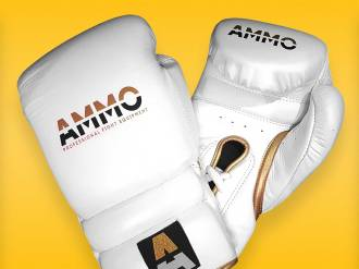 AMMO Wear Boxing Gloves (16oz) Review