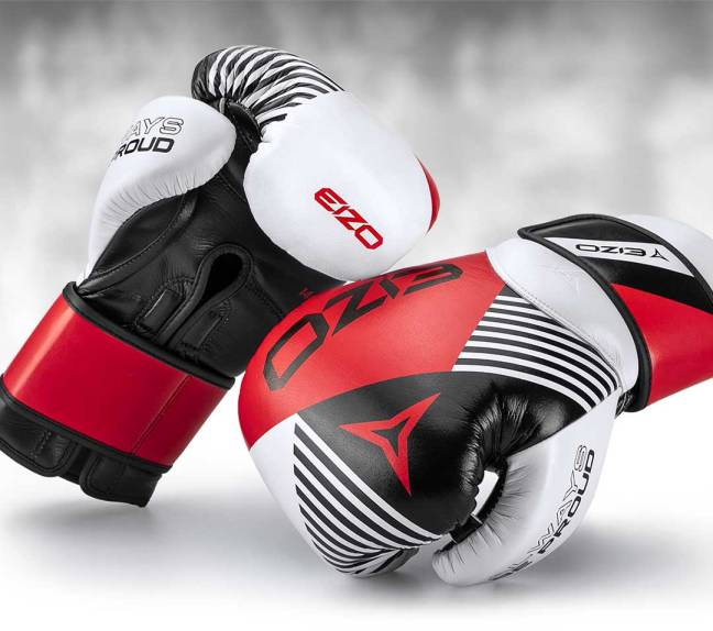 Eizo NEXT Boxing Gloves