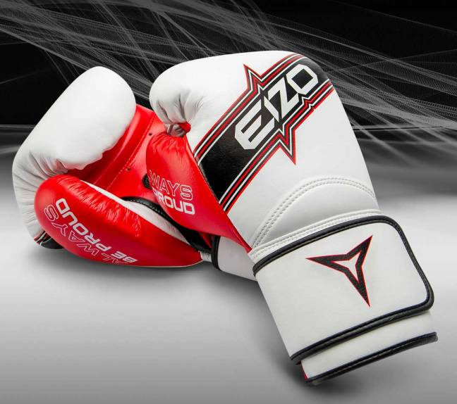 Eizo DYNAMIC Boxing Gloves