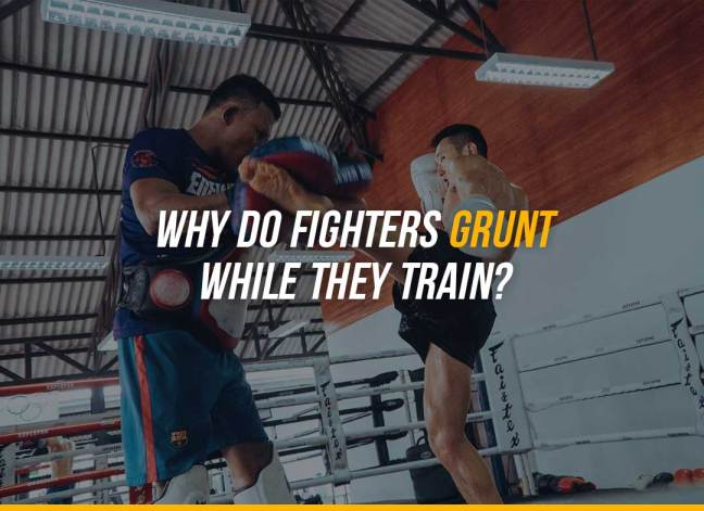 Why Do Fighters Grunt While They Train?